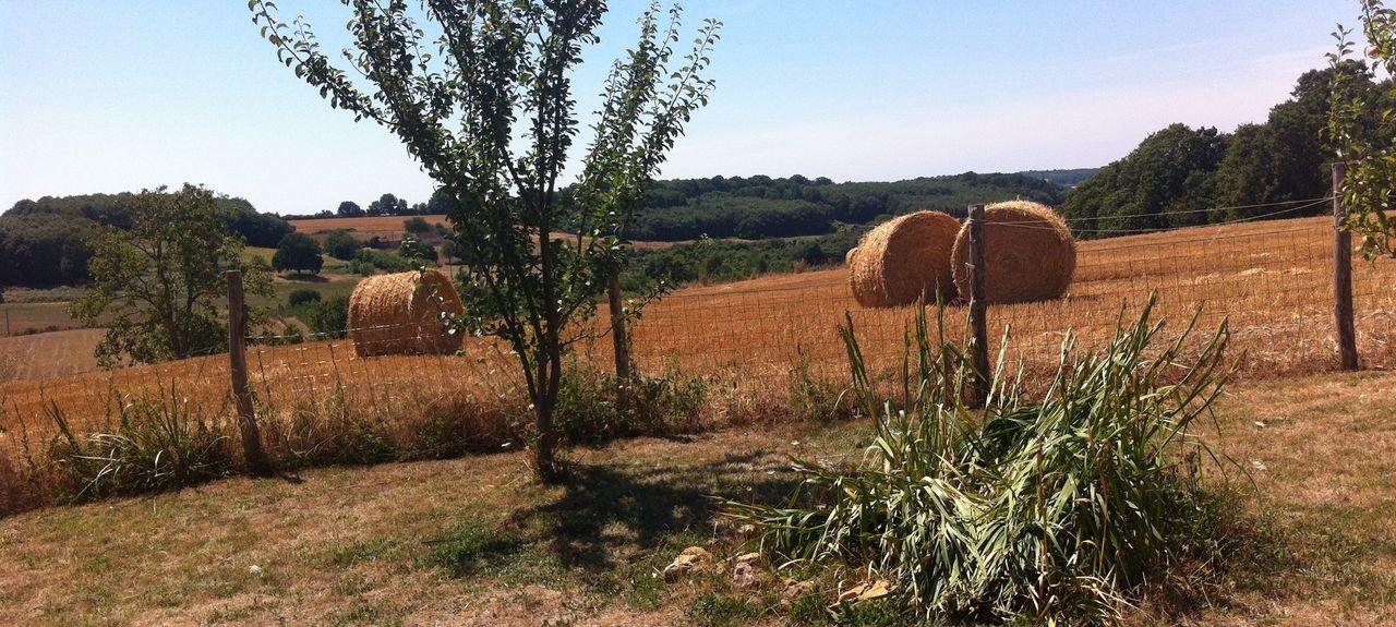 La Ferté-Bernard, Sarthe, Pays de la Loire, France