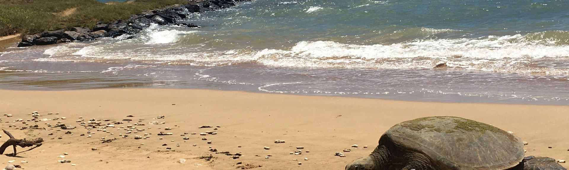 Waiohuli Beach Hale, Kihei, HI, USA
