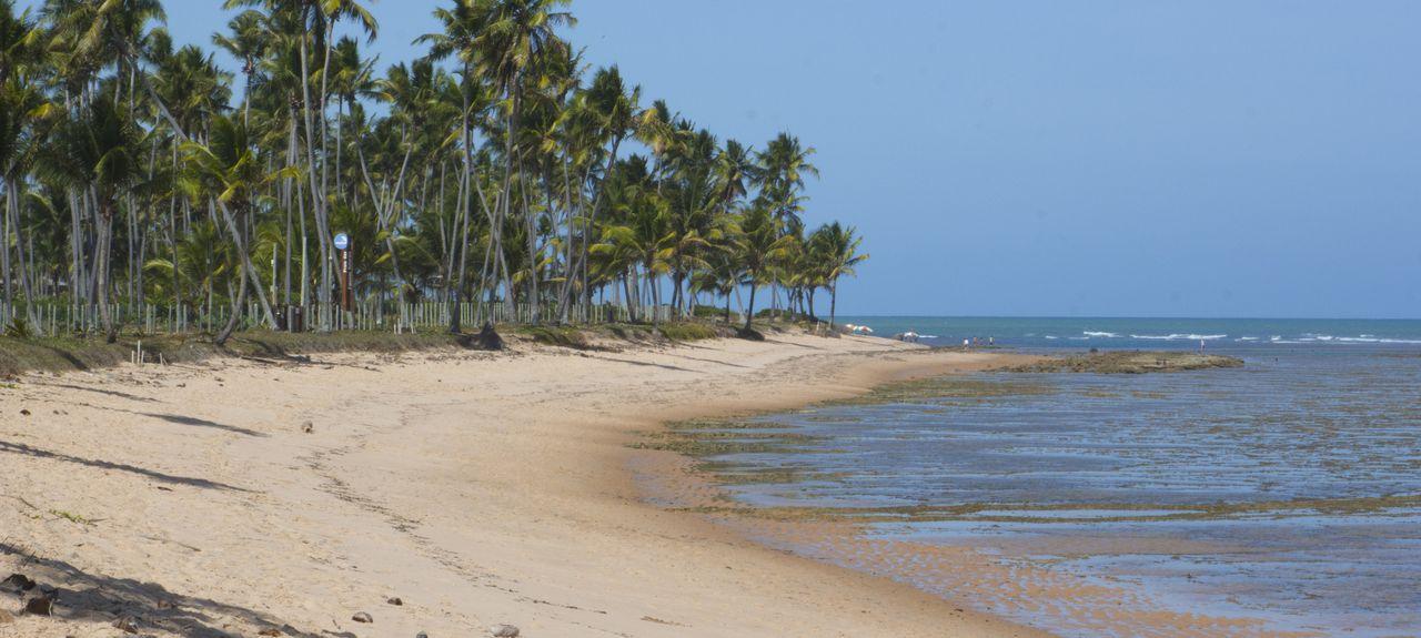 Mata de São João, State of Bahia, Brazil