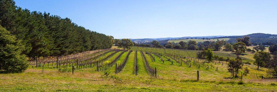 Centennial Vineyards, Bowral, New South Wales, Australia
