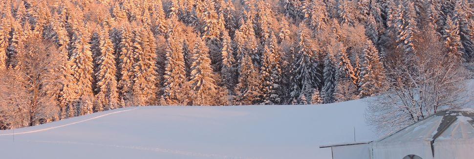 Le Poizat-Lalleyriat, Auvernia-Ródano-Alpes, Francia