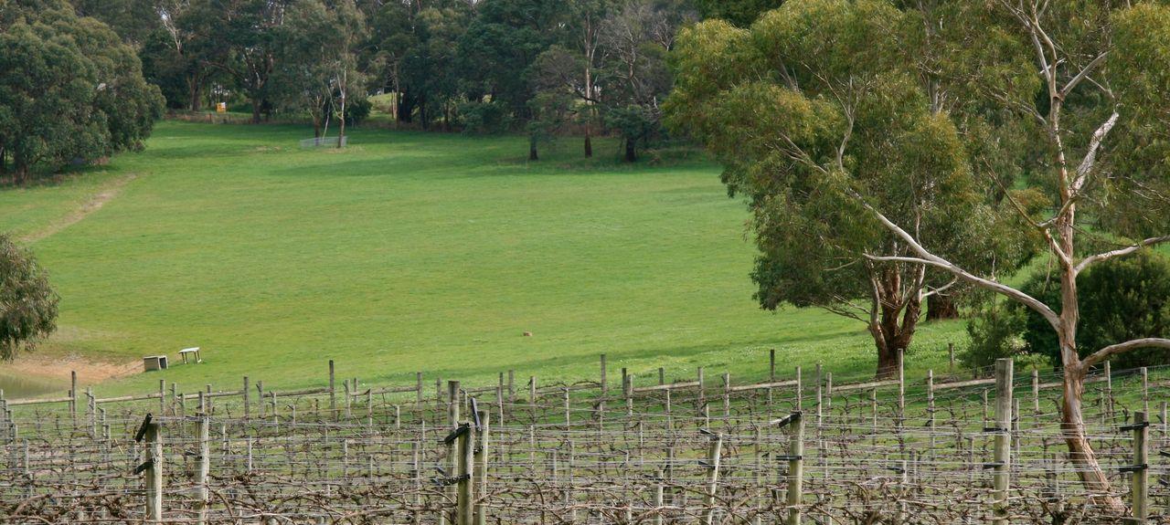 Lorne Country Club, Lorne, Victoria, AU