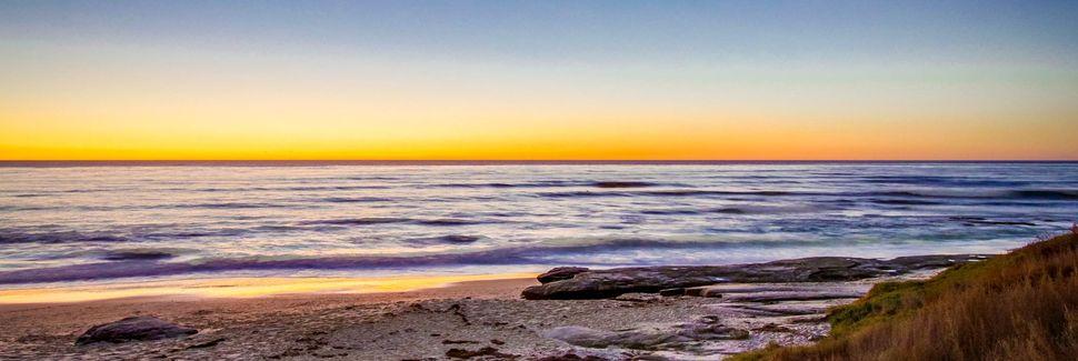 Praia Estadual de Torrey Pines, San Diego, Califórnia, Estados Unidos