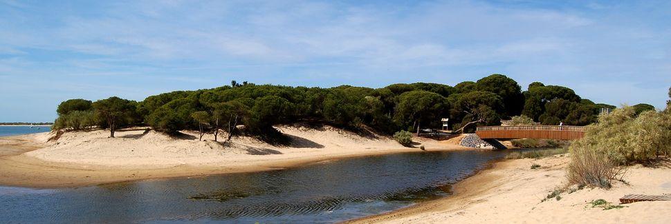Marisma de El Burro, Huelva, Andalusia, Espanja