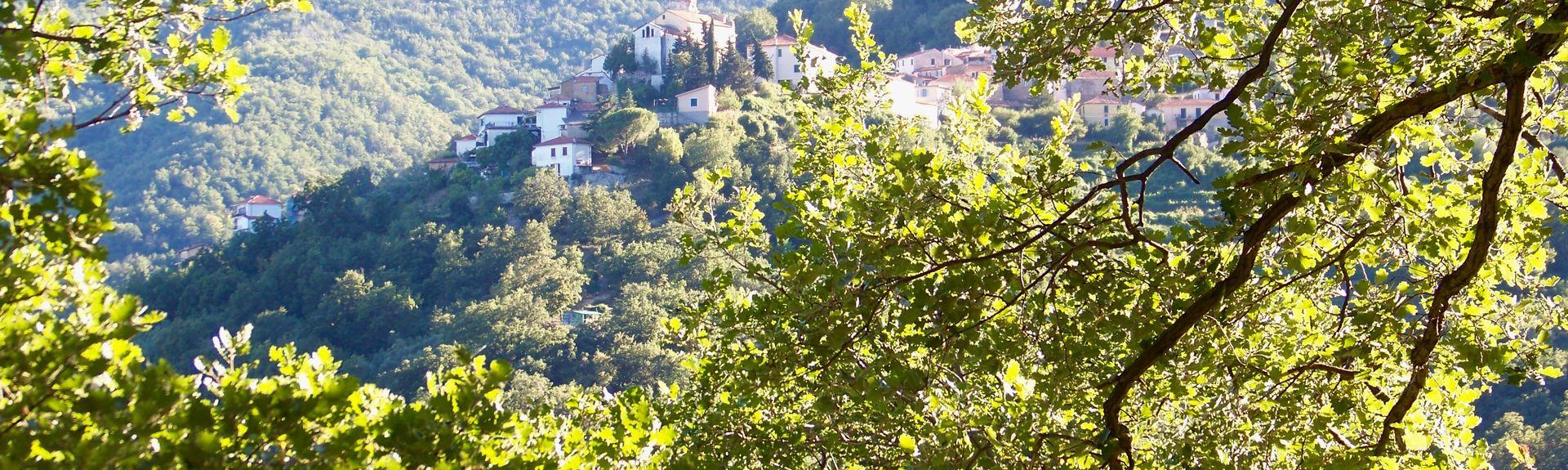 Ranzo, Liguria, Italia