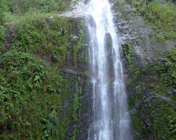 Vieux-Habitants, Guadeloupe