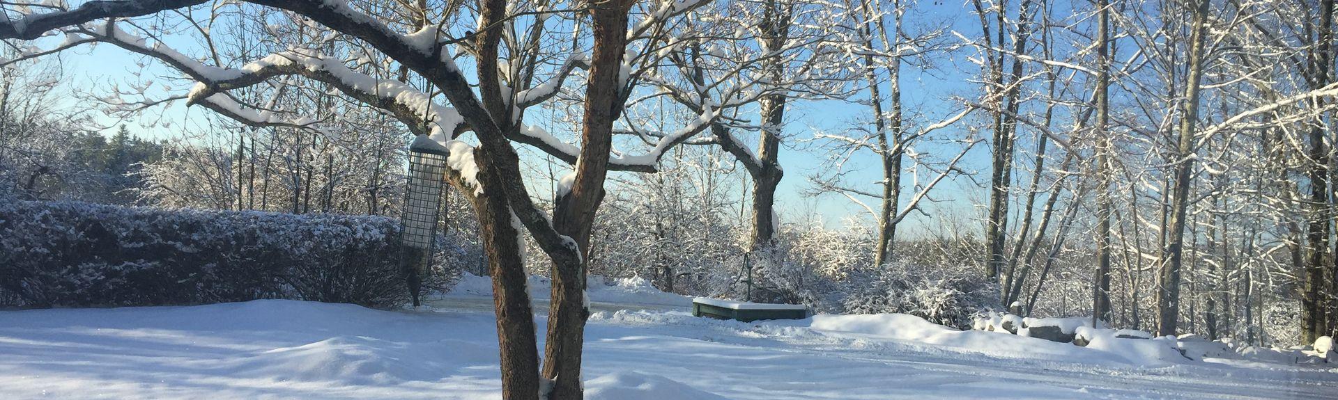 Wilton, New Hampshire, United States of America