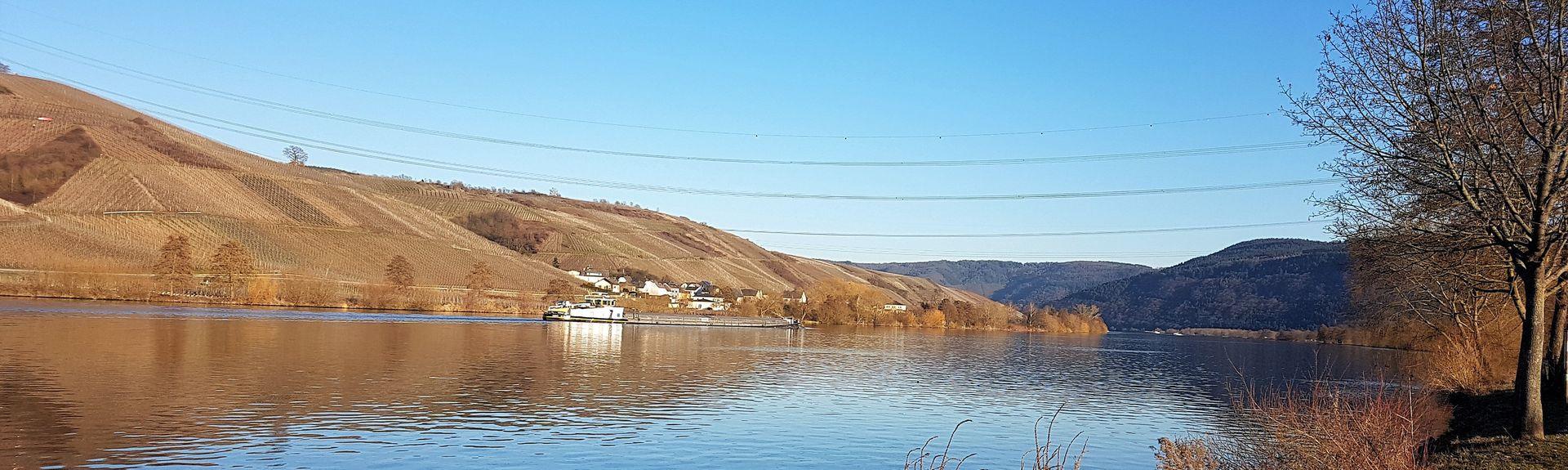 Riveris, Rhineland-Palatinate, Germany