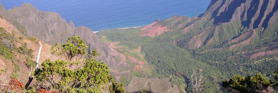 Kiahuna Plantation Resort Kauai (Koloa, Hawaii, Stati Uniti d'America)