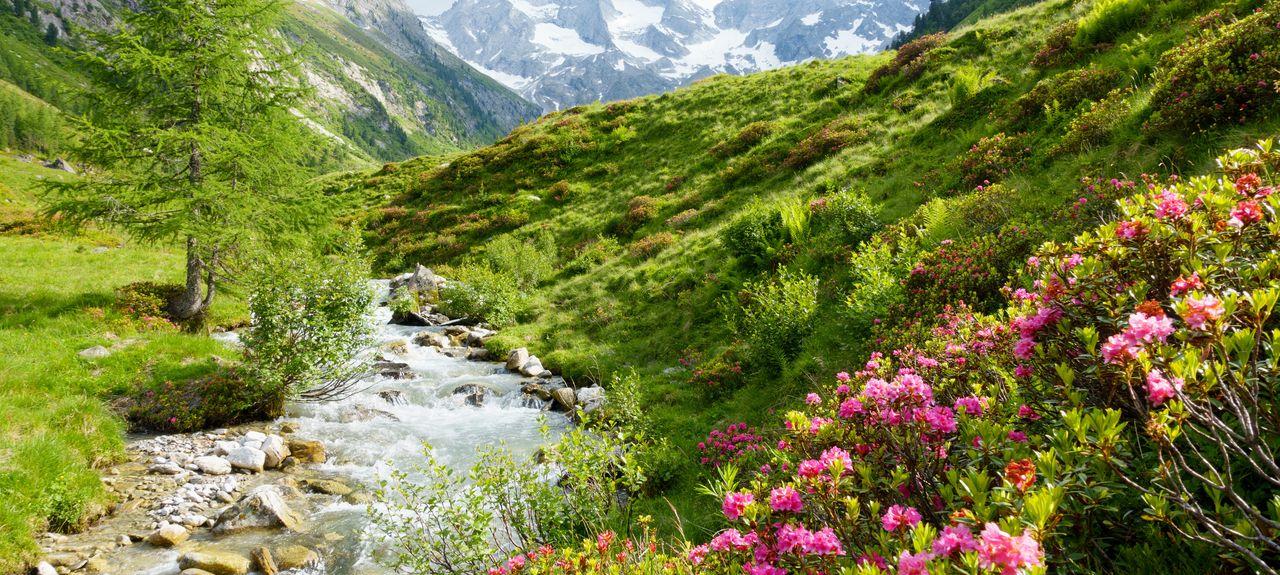 Zillertal, Tyrol, Autriche