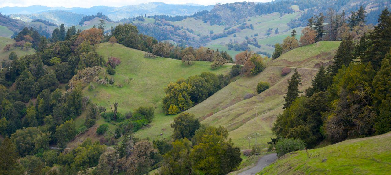 Glen Ellen, California, United States