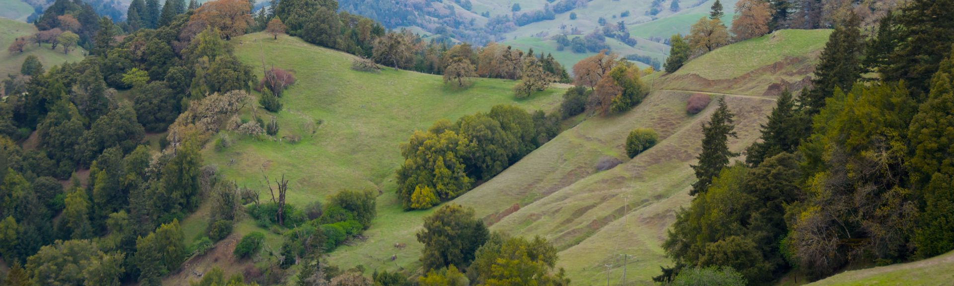 Glen Ellen, California, United States of America