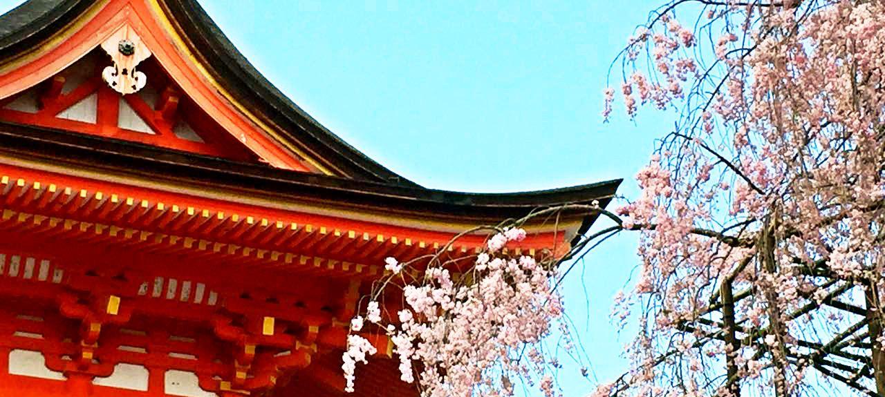 Gion Corner, Kioto, Kioto (prefectura), Japón