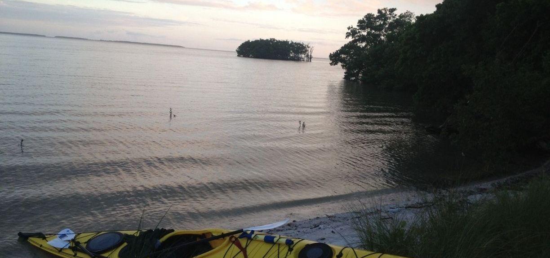Flamingo Island Course - Lely Resort, Naples, Florida, USA