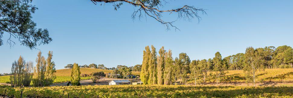 McLaren Vale, Zuid-Australië, Australië