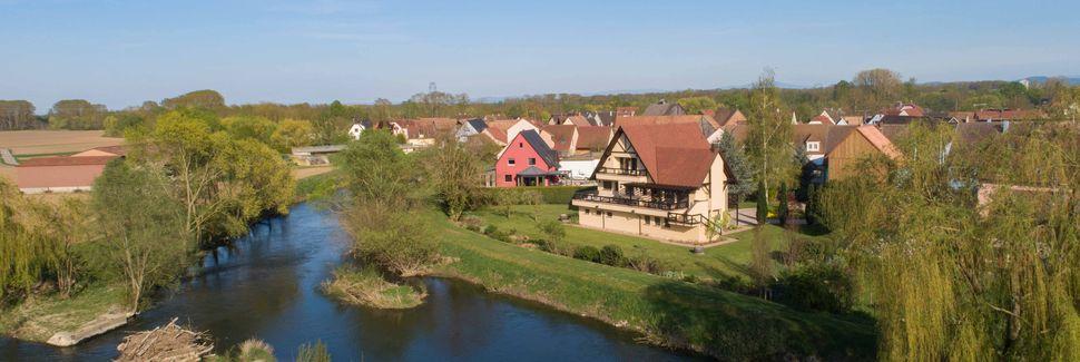 Châtenois, Communauté de Communes de Sélestat, Grand Est, Frankrijk