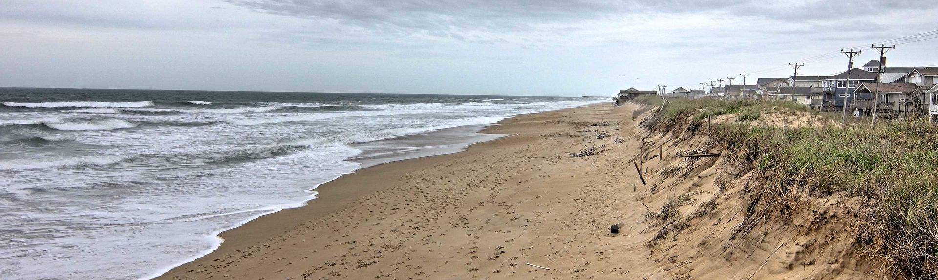 Nags Head Woods Preserve, Kill Devil Hills, North Carolina, USA