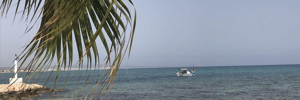 Distretto di Larnaca, Cipro