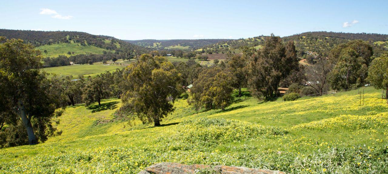 Gidgegannup WA, Australia