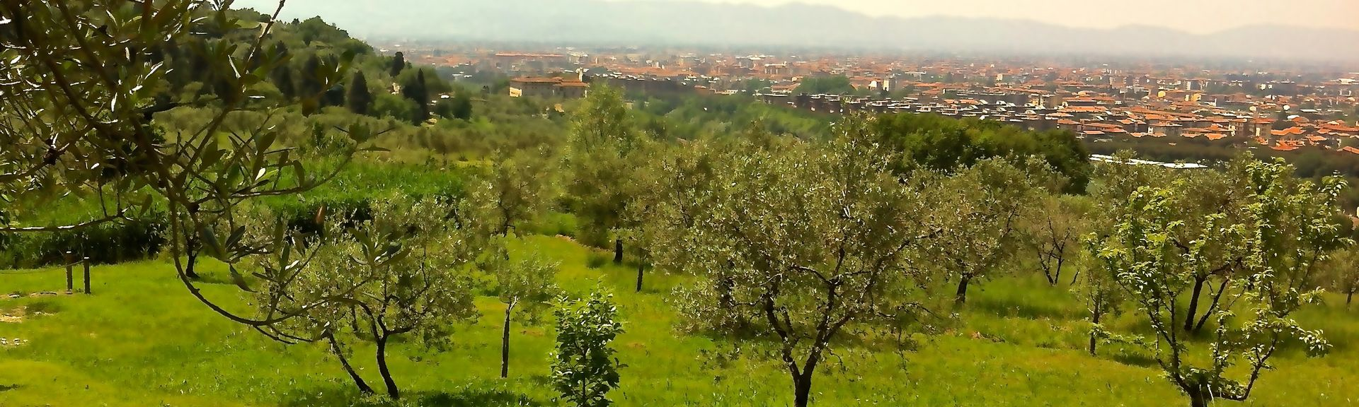 Pistoia, Pistoia, Toscana, Italia