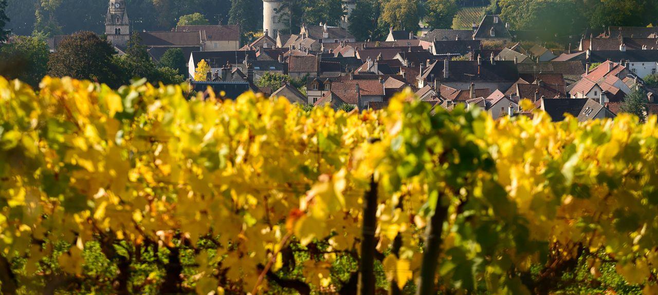 Argilly, Bourgogne-Franche-Comté, France