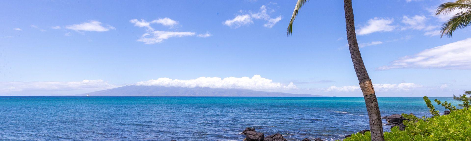 Mahina Surf (Kahana (Maui), Hawaï, Verenigde Staten)