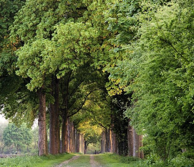 Arcen, Limburg, Nederland