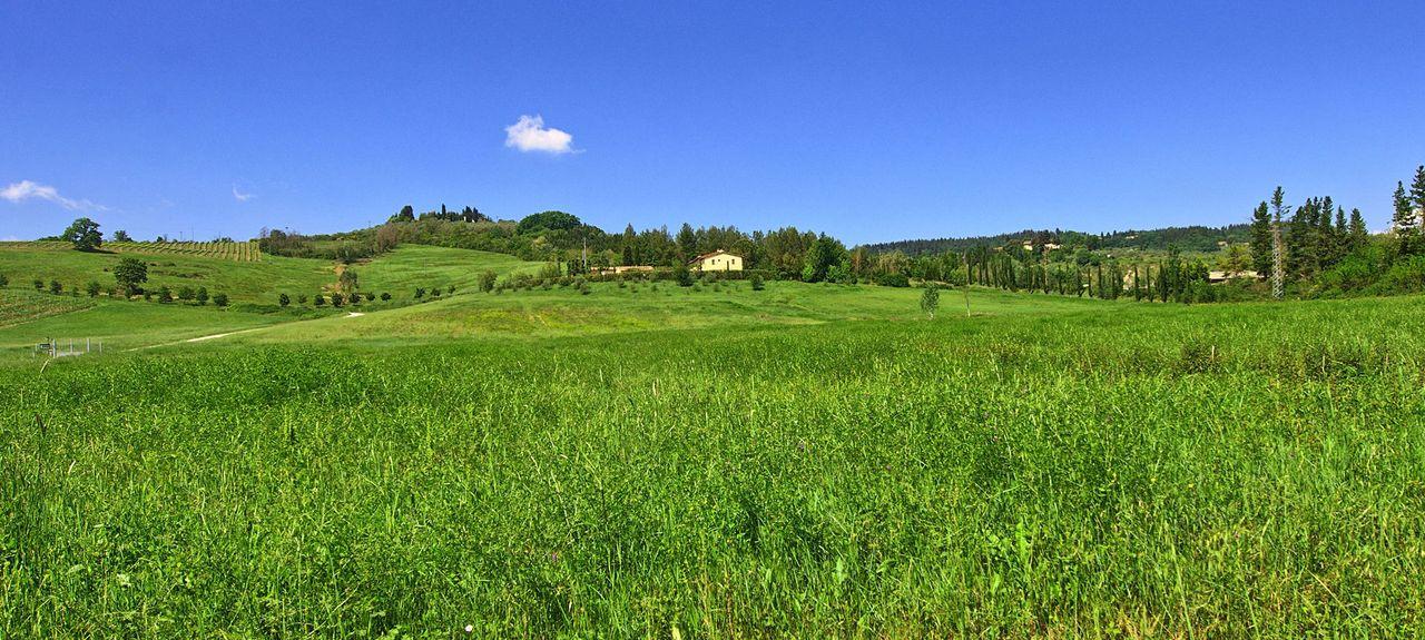 Bagnolo-cantagallo, Metropolitan City of Florence, Tuscany, Italy