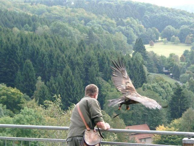 Warburg, Renânia do Norte-Vestfália, Alemanha