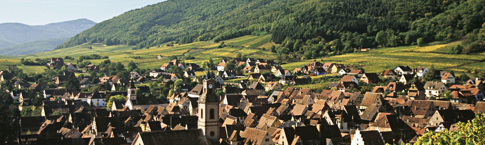 Elzas, Frankrijk