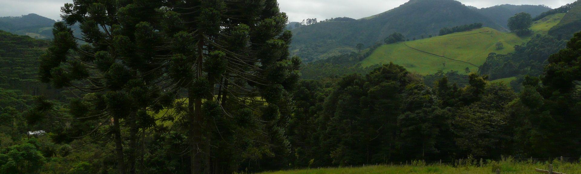 Μινάς Γκεραίς, Βραζιλία