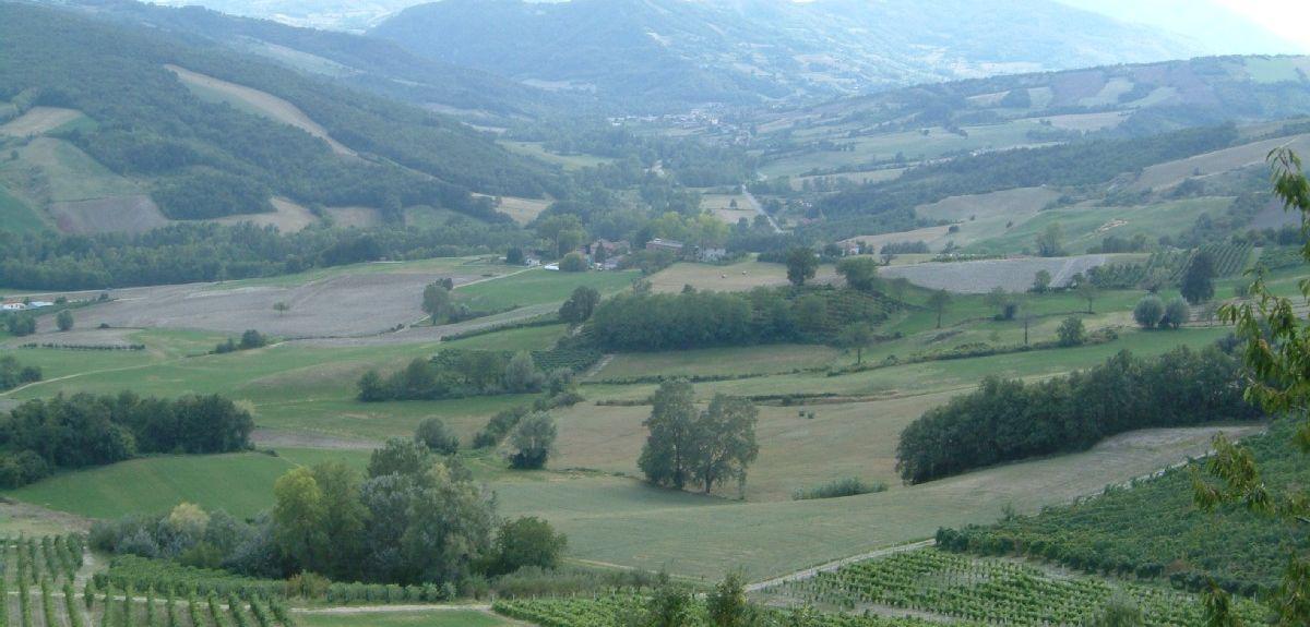 I Rabbini, Piacenza, Emilia-Romagna, Italy
