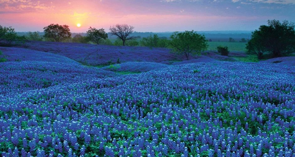 Hempstead, TX, USA