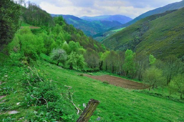 Tineo, Asturie, Spagna