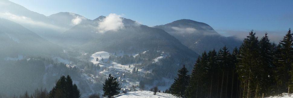 Le Haut Soultzbach, Grand Est, Frankrijk