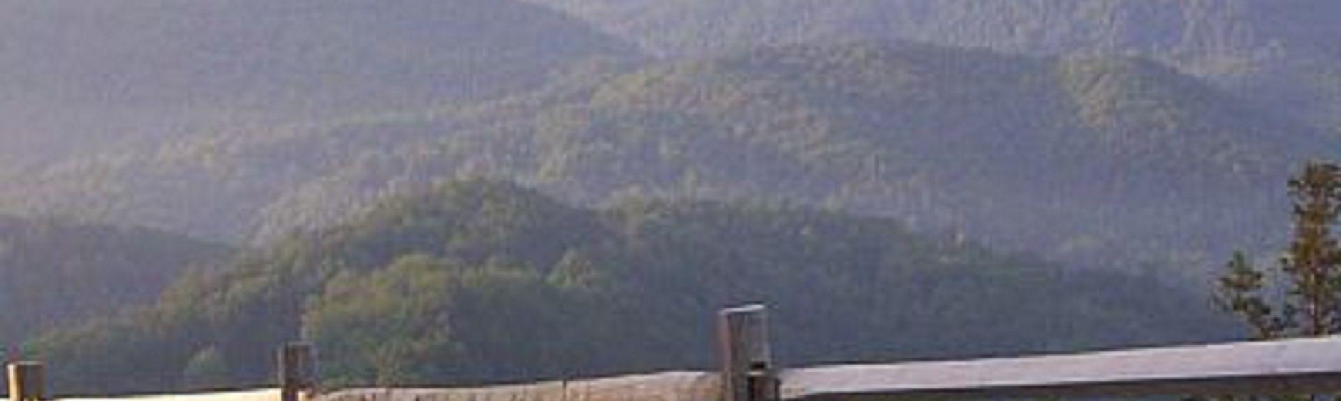 Cascate Tom Branch Falls, Cherokee, North Carolina, Stati Uniti d'America
