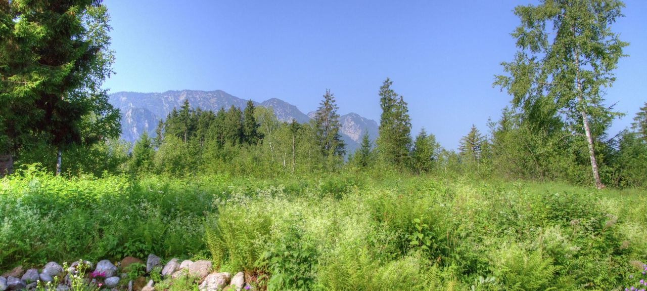 Eck, Inzell, Germany