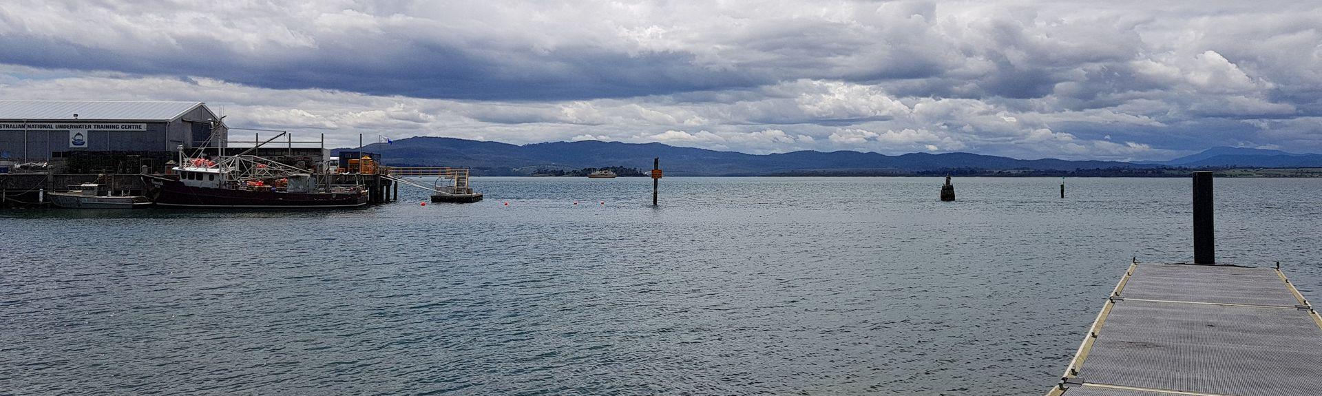 Seahorse World, Beauty Point, Tasmanië, Australië