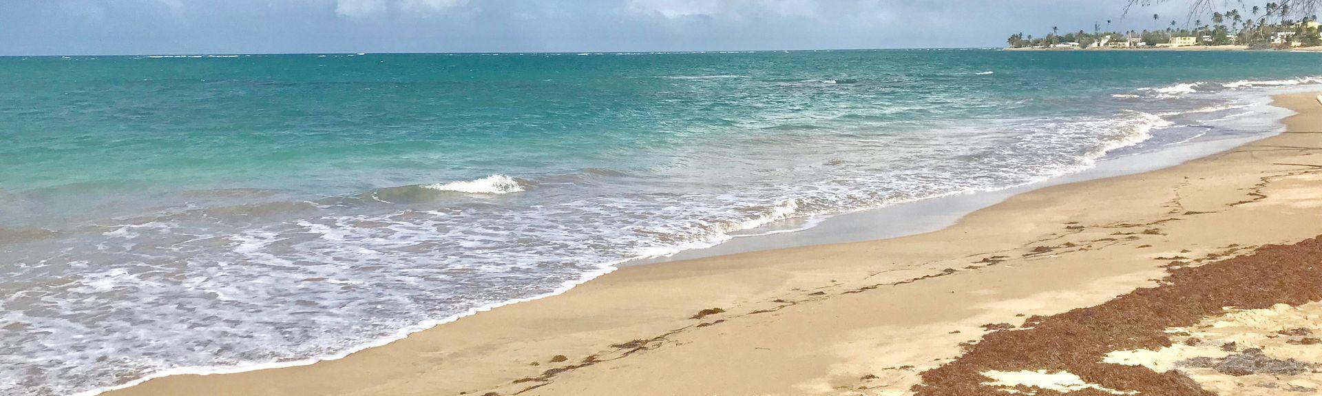 Luquillo-Strand, Mata de Plátano, Luquillo, Puerto Rico