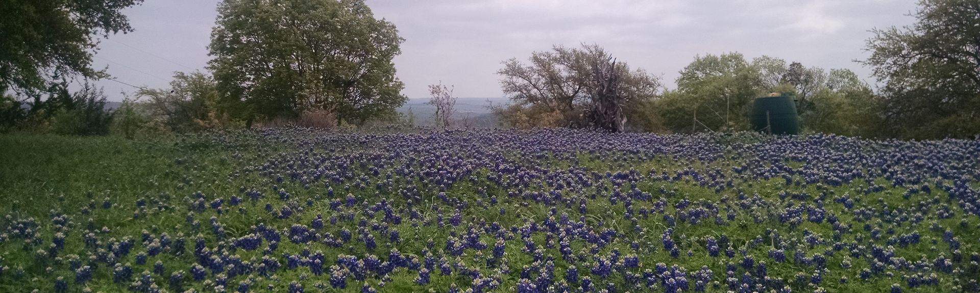 Blanco, Texas, Vereinigte Staaten