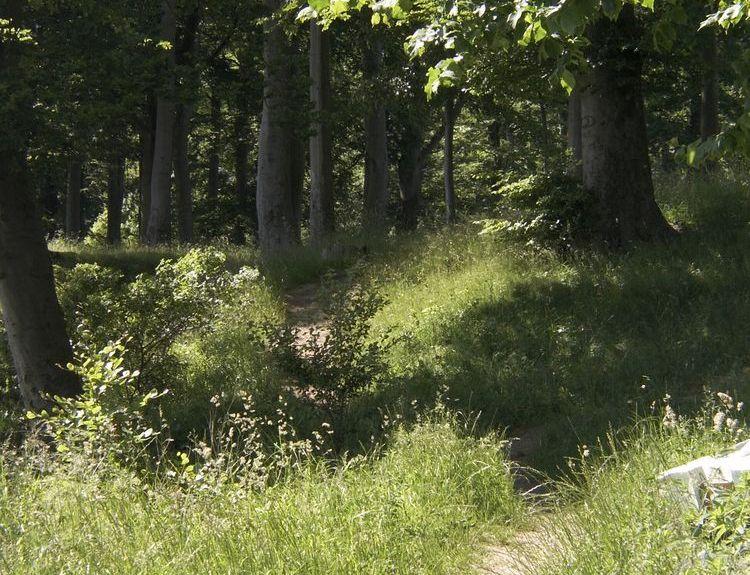 Grønninghoved, Syddanmark, Dinamarca