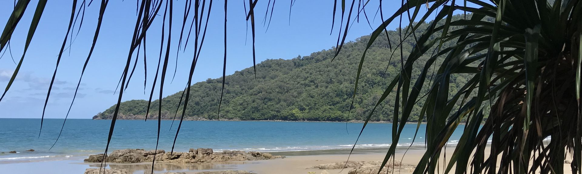 Cape Tribulation, Cape Tribulation, Queensland, Australia