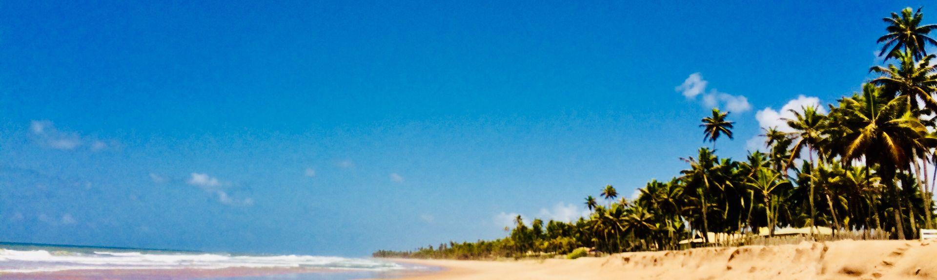 Jaua Beach, Camaçari, State of Bahia, BR