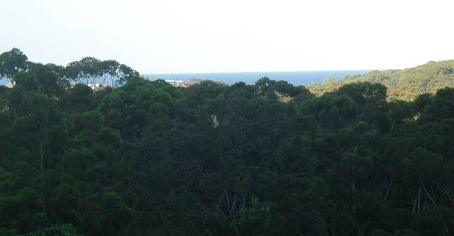 South West Rocks, Nuovo Galles del Sud, Australia