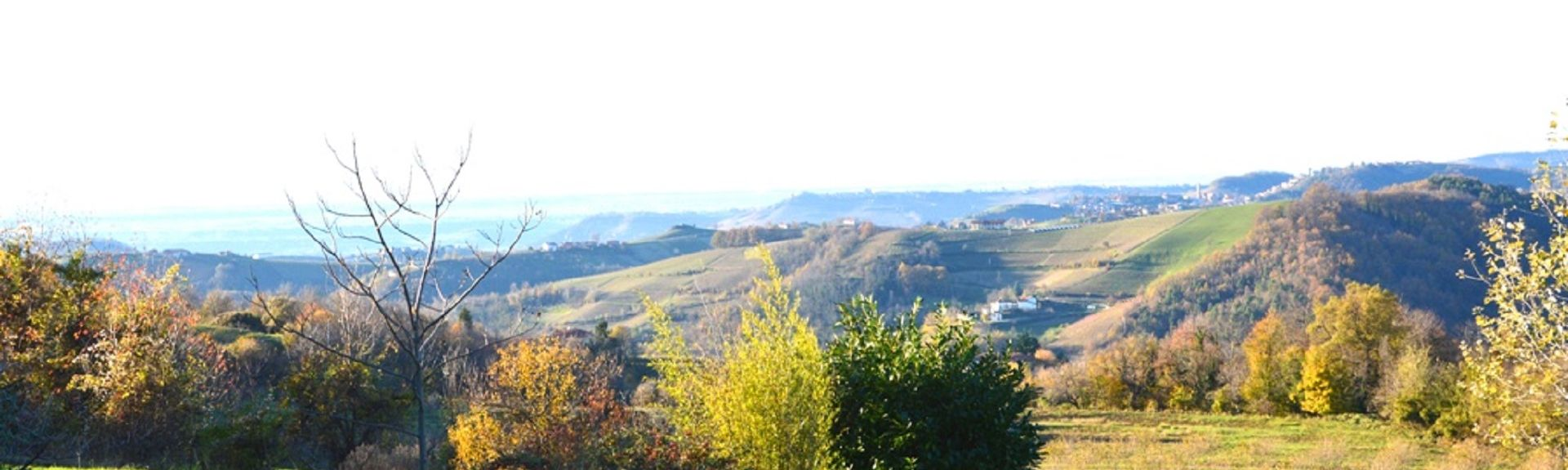 Serralunga d'Alba, Cuneo, Piedmont, Italy