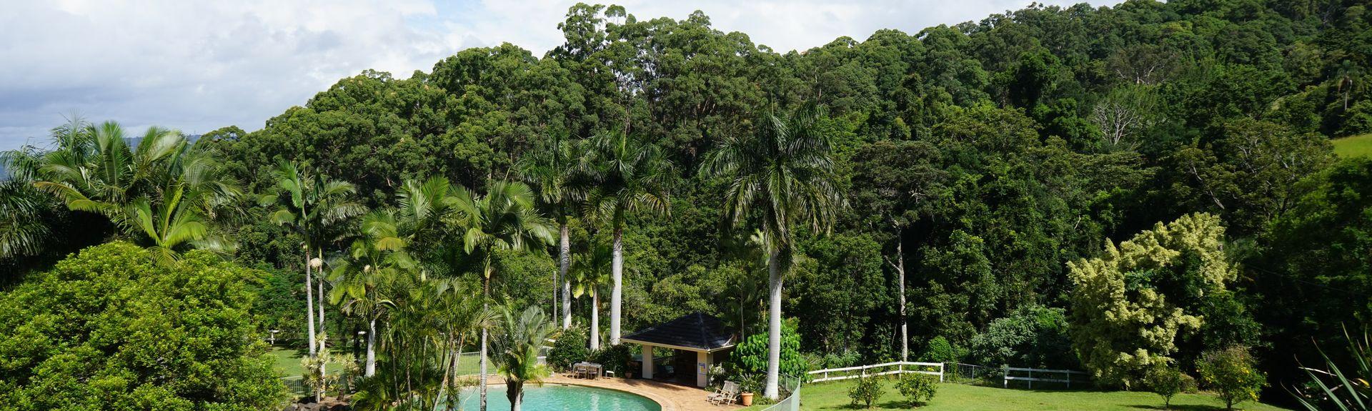 Sippy Downs, Sunshine Coast, Queensland, Australië