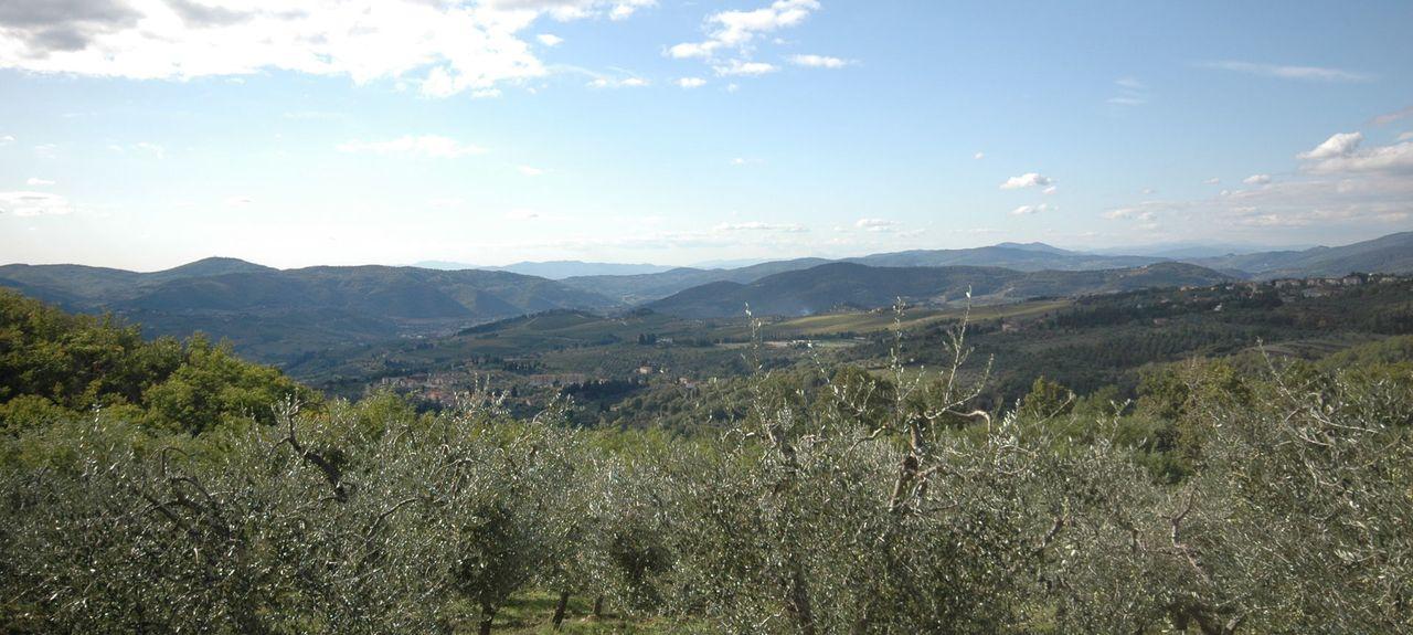 Reggello, Metropolitan City of Florence, Italy