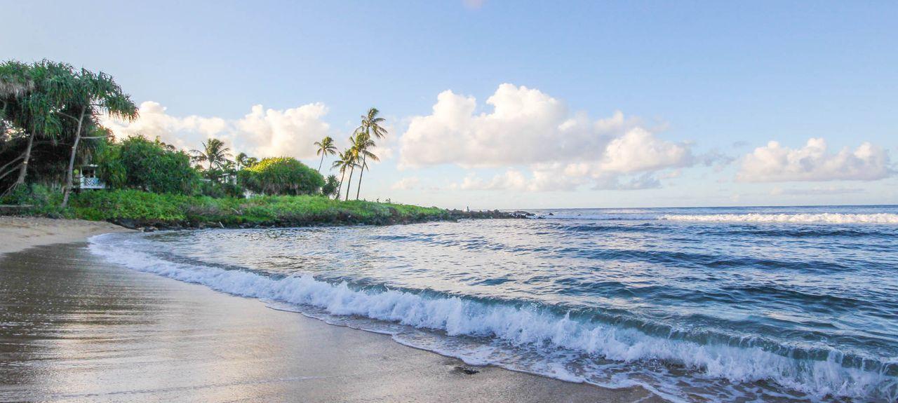 Poipu Shores (Koloa, Hawaï, États-Unis d'Amérique)