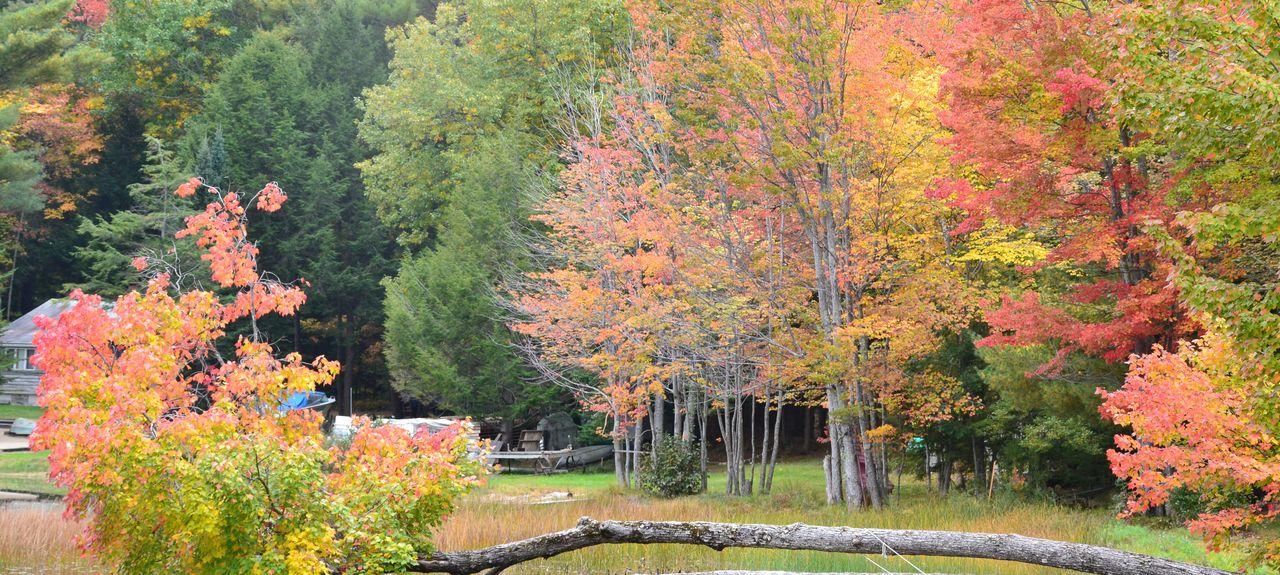 Comté d'Androscoggin, Maine, États-Unis