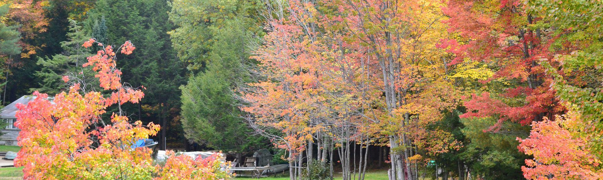 Comté d'Androscoggin, Maine, États-Unis d'Amérique